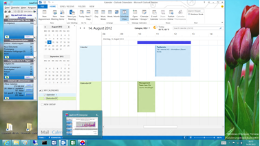 Office 2013 - Anwaltssoftware LawFirm Outlook 2013 Synchronisation - Kalender Planungs-Ansicht